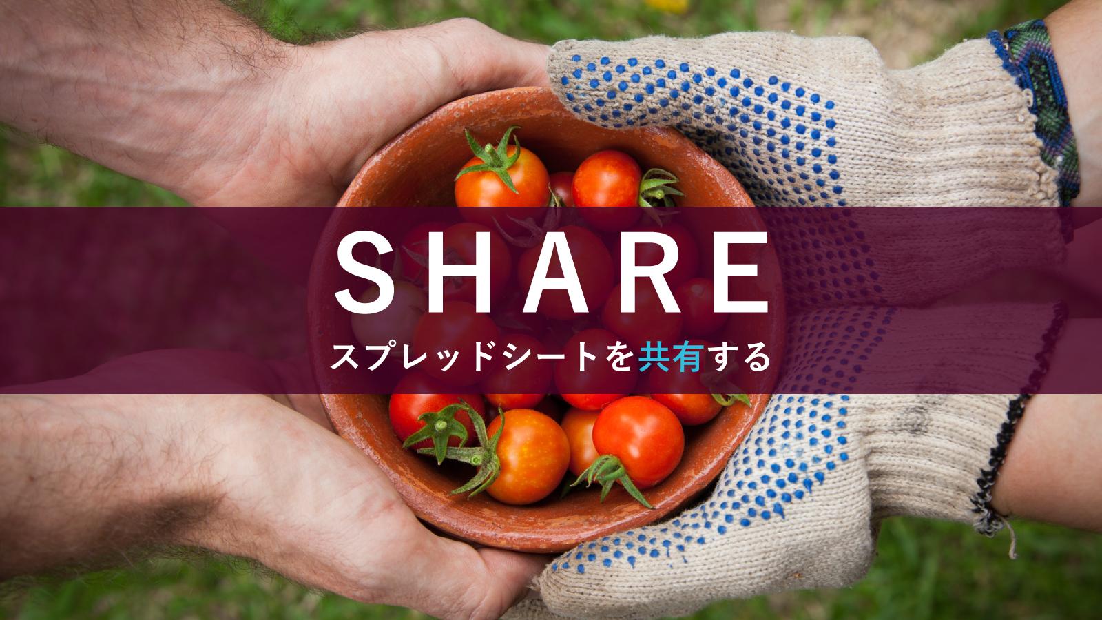 【必見】スプレッドシートを他人に共有する方法を紹介!